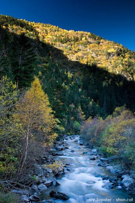 El curs alt de la Noguera Pallaresa a la tardor sota el Pont Nou. Pallars Sobirà (Catalunya, Espanya). Noguera Pallaresa river upper course in fall near Nou bridge.